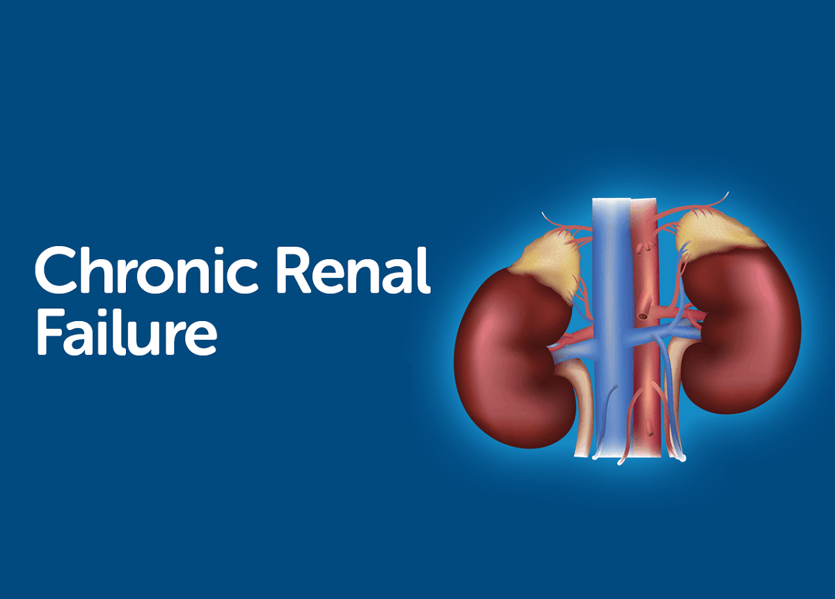 Useful Information For The Patient With Chronic Renal Failure