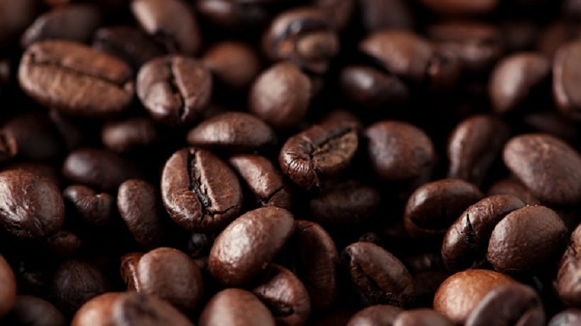 Your Little Guide to Coffee Beans