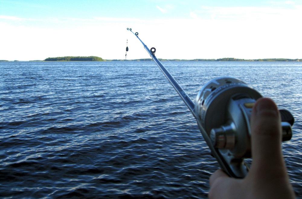 Sports Fishing Newbies